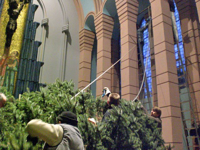 Christbaum-2009_24